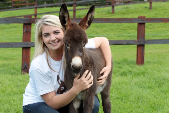 Community Fund: The Donkey Sanctuary, Co. Cork